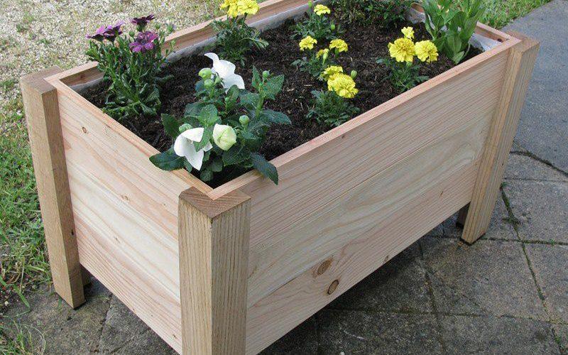 Comment choisir la bonne jardinière